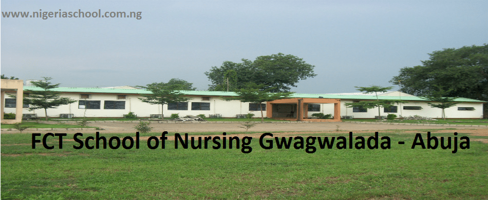 FCT School of Nursing Gwagwalada