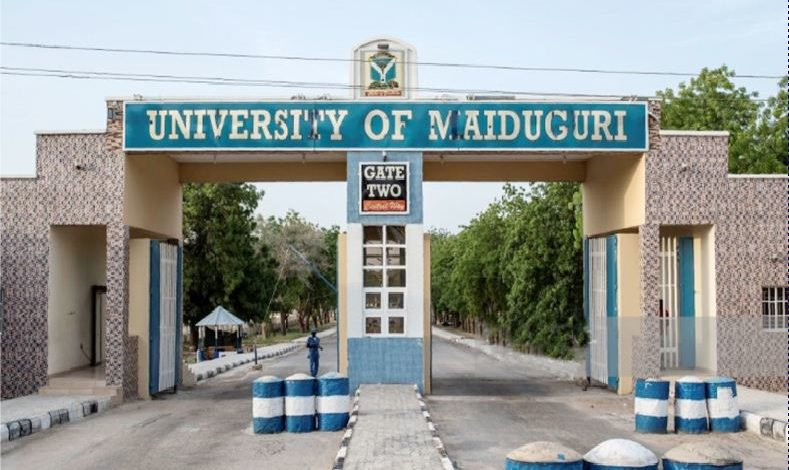 Main Entrance, UNIMAID. Photo: Nigeria Universities
