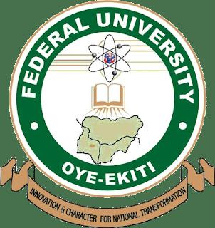FUOYE Postgraduate Application Form